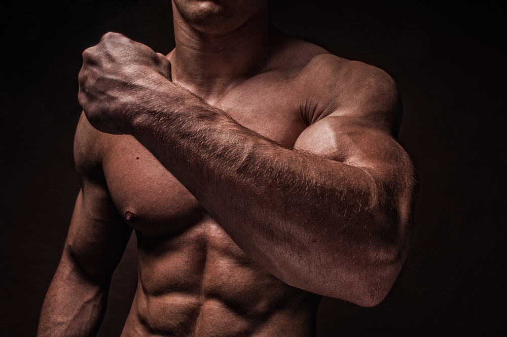 Muscle: To Bulk Or Not To Bulk