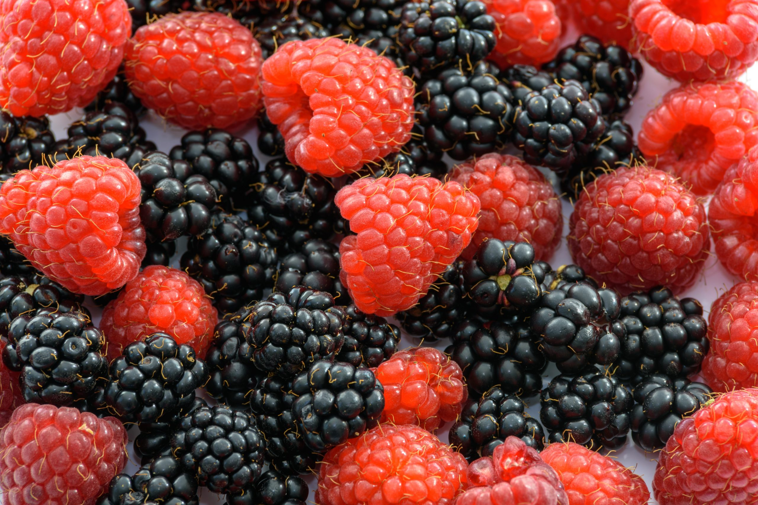 Antioxidants:  Eat All Your Colors!